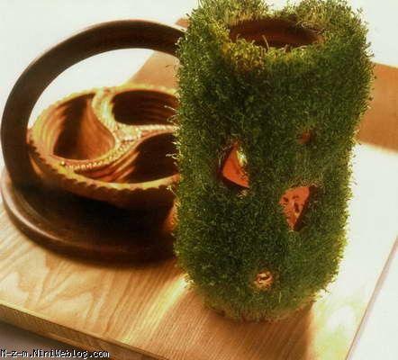 نحوه کاشت سبزه به شکل مزرعه happy nowruz to all my fellow kurdistani especially yarasani