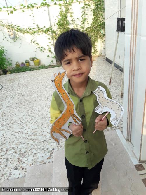 محمدرضا ومدرسه