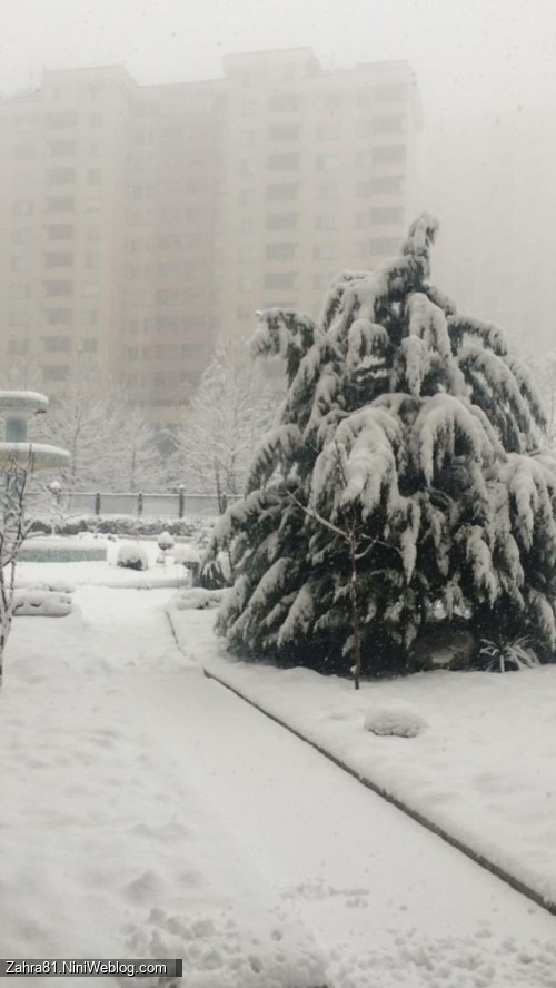 دومین برف امسال