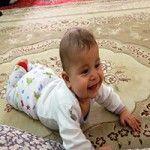 mohammad-hosein